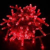 Dây đèn LED giá rẻ nhiều màu
